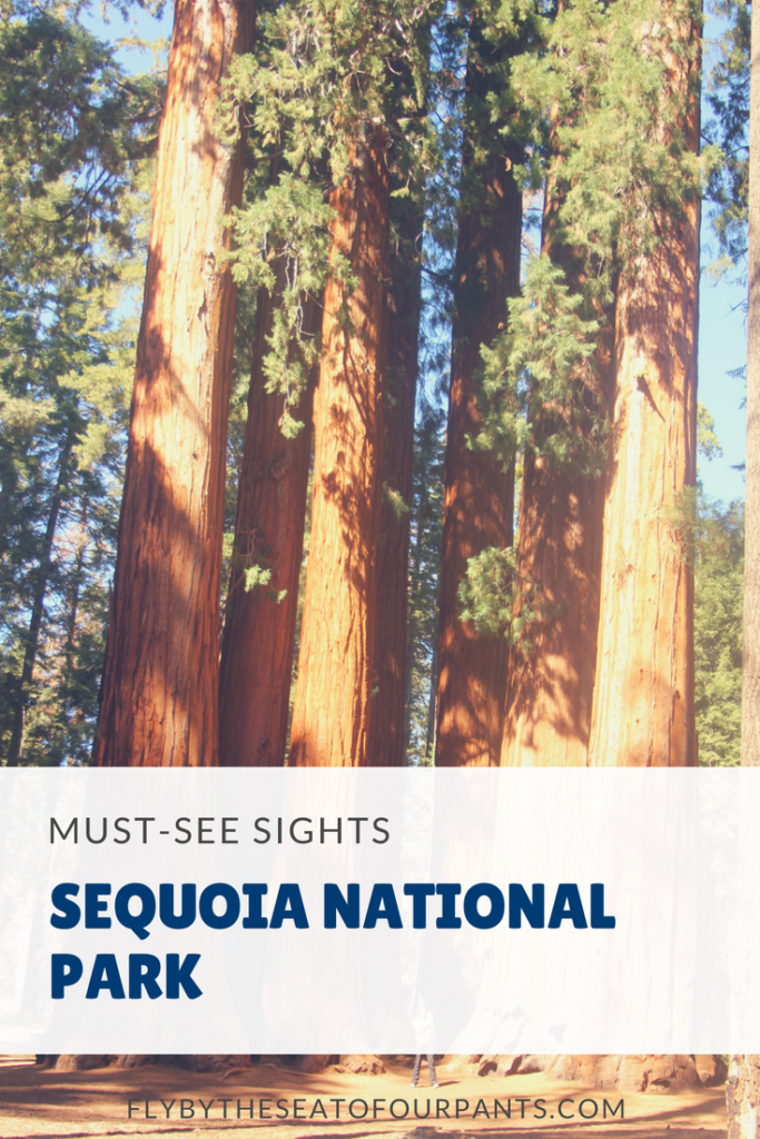 pin for day trip itinerary in Sequoia National Park