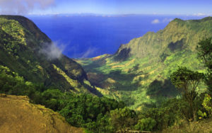 Waimea Canyon view, Kauai, Hawaii