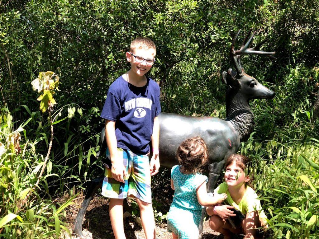 Deer statue at Dallas Arboretum