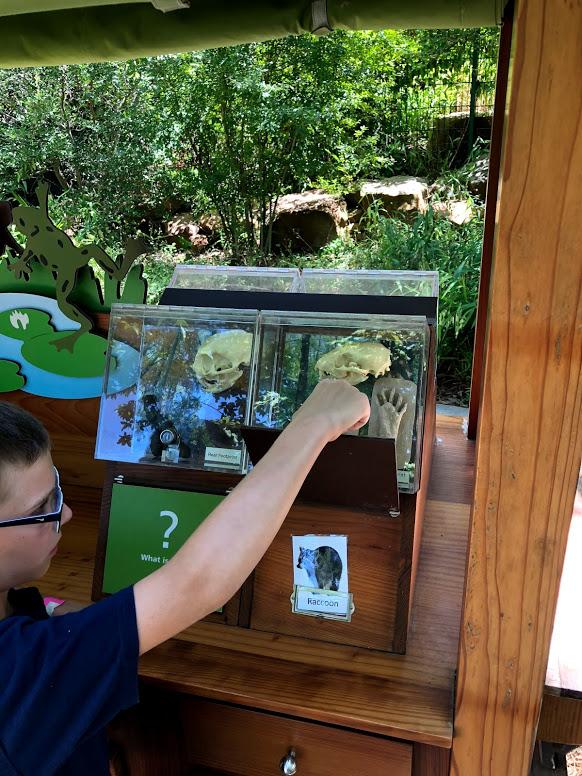 information kiosk at Dallas Arboretum