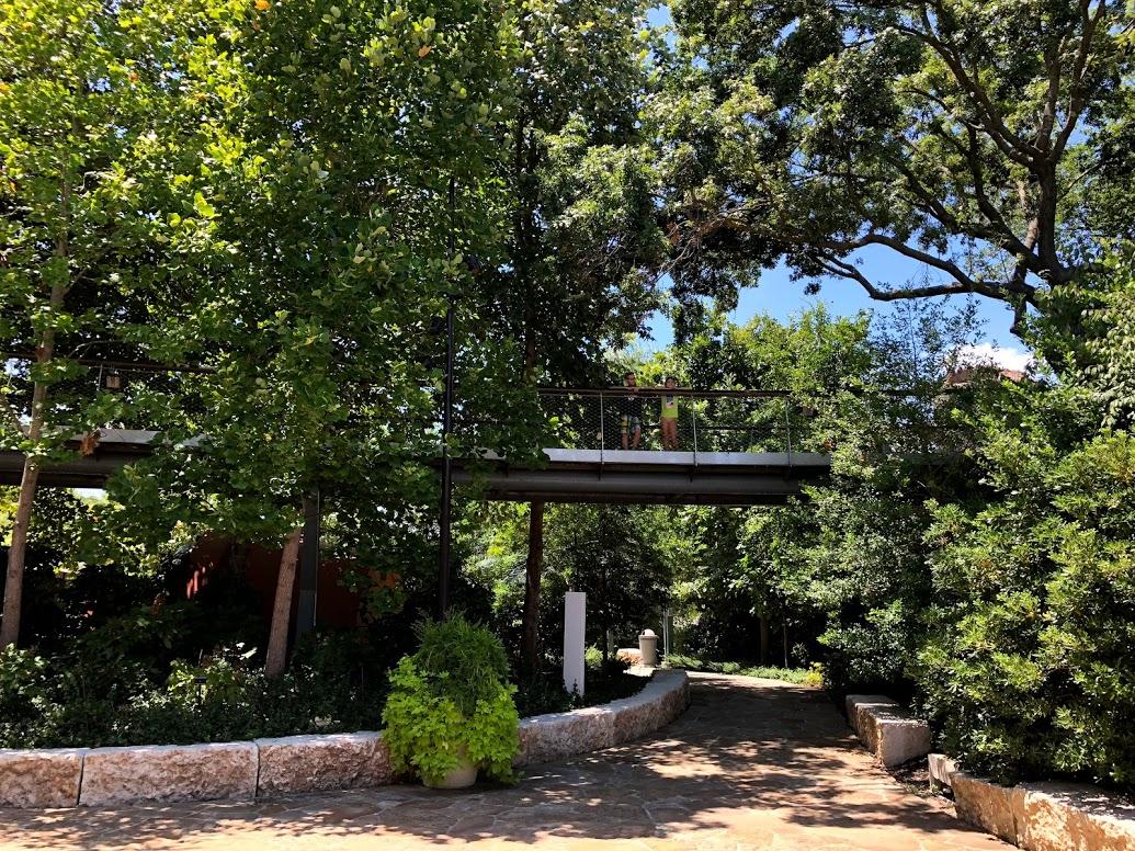 walk in the cloud bridge at Dallas Arboretum