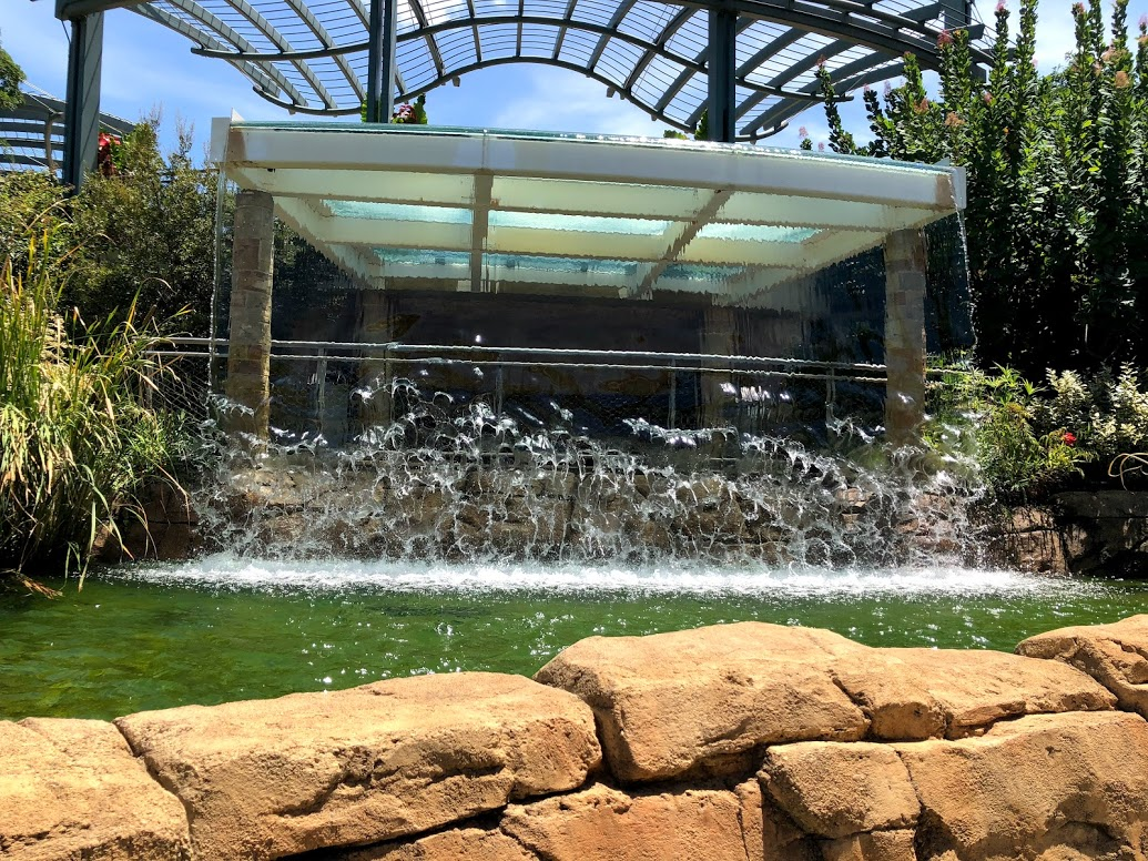 the cascades at Dallas Arboretum
