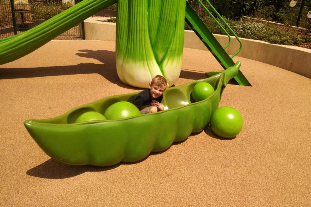 A young boy at the Childrens Garden Incredible edible Garden Dallas Arboretum