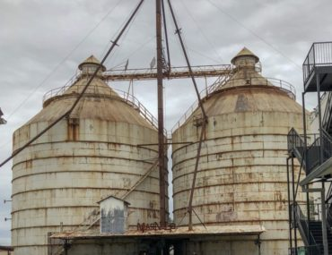 The outdoor green space at the silos of Magnolia Market