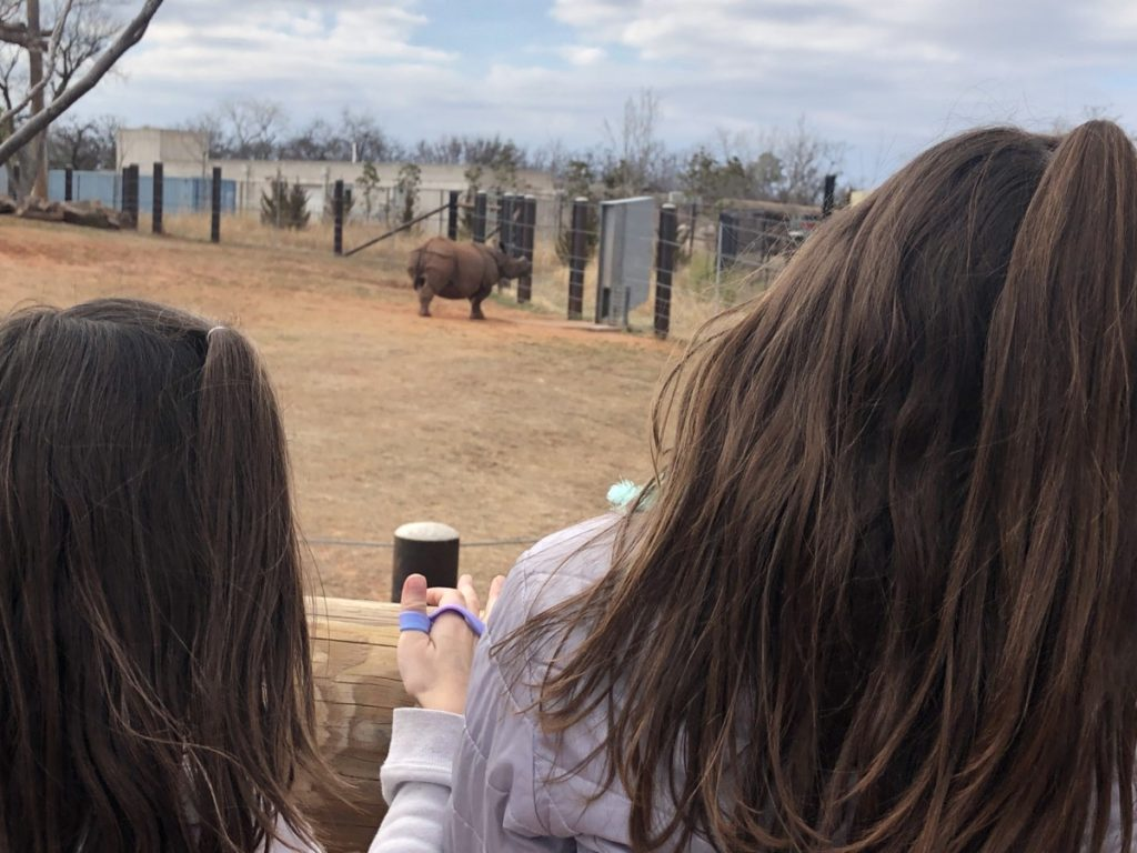 2 girls look at the Rhino at OKC zoo