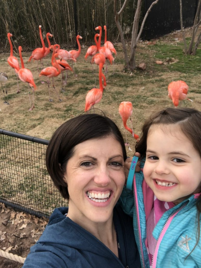 Mom and Toddler with pink Flamingos in the back at the oklahoma City Zoo, OKC with kids