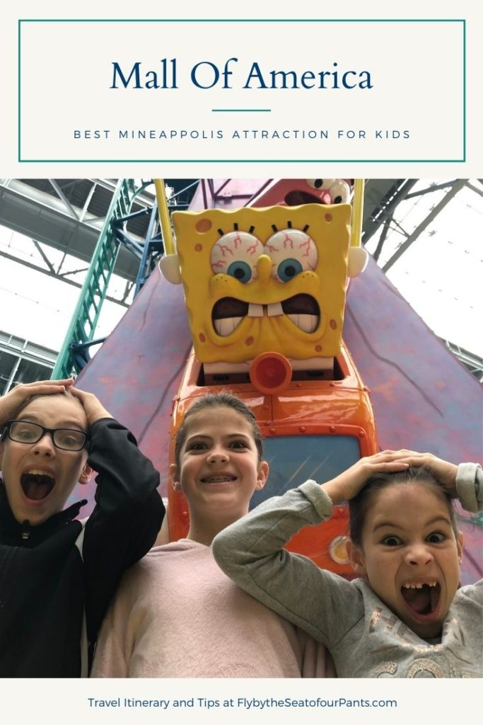 Pin for the Mall of America, Kids screaming at Rock bottom Plunge ride