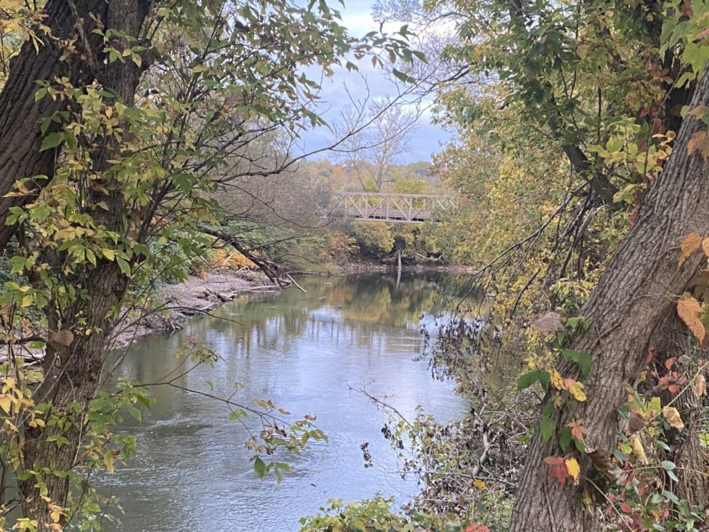Tree lined river and Bridge in Cuyahoga Valley National Park