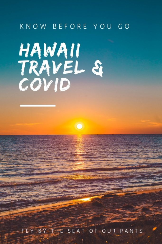 Hawaii Travel and Covid What you need to know before going to Hawaii during the COVID pandemic